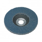 Image for Flap Discs - 100mm