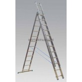 Image for Ladders
