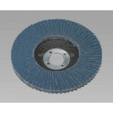 Image for Flap Discs