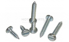 Image for 1' X 10 SLOT SELF TAP SCREW